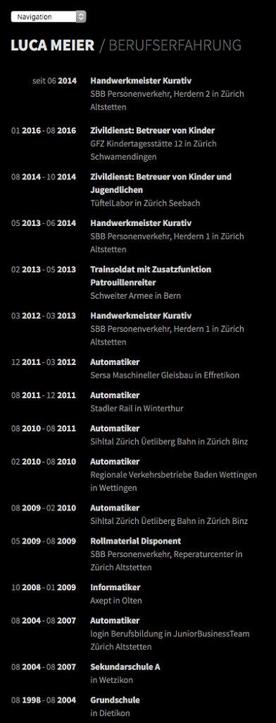 screencapture-lucameier-ch-pages-berufserfahrung-1459167422514.jpg